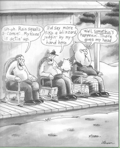 FarSide Weather